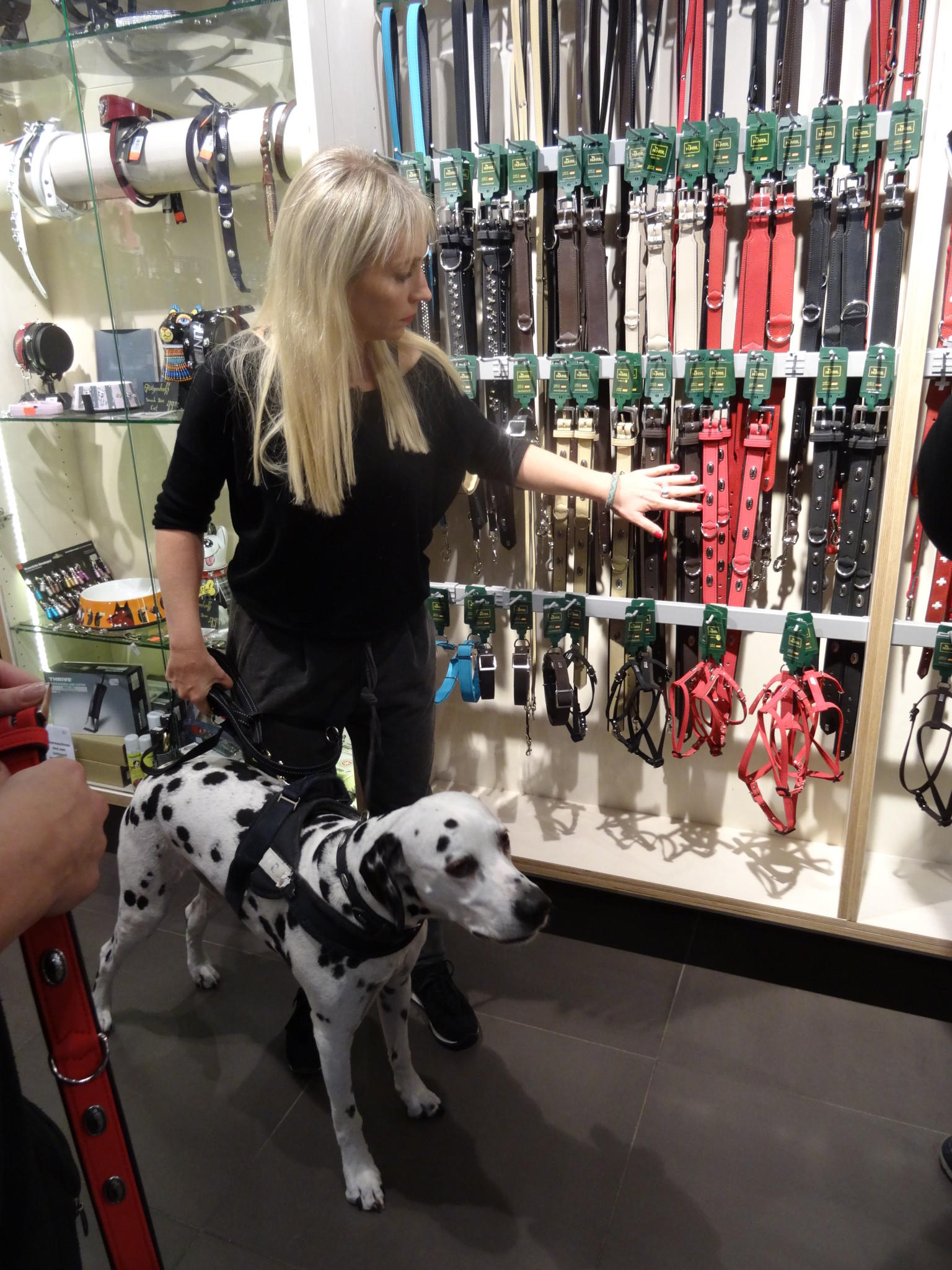 Shopping Queen – Düsseldorf Hunde Backstage