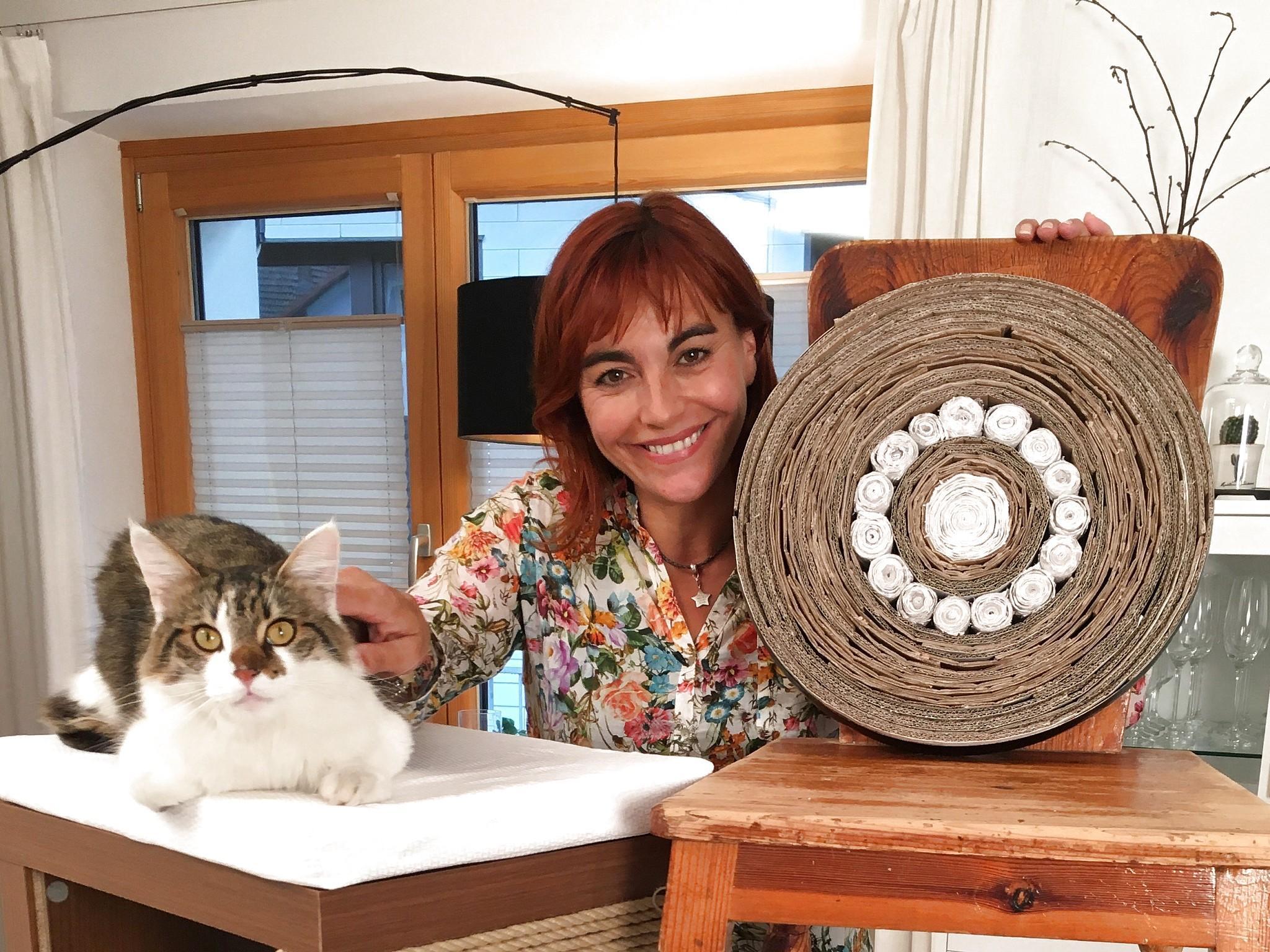 das beste von spielzeug f r katzen selbst basteln tierspielzeug. Black Bedroom Furniture Sets. Home Design Ideas