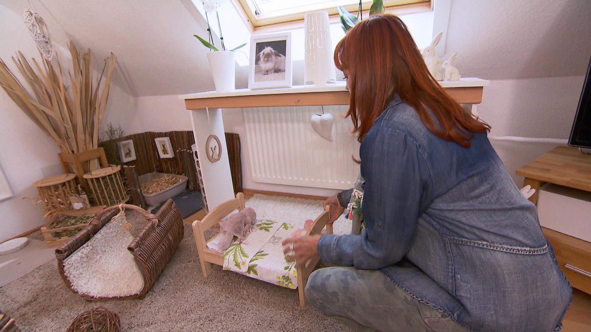 hundkatzemaus diana zeigt kaninchen in wohnungshaltung. Black Bedroom Furniture Sets. Home Design Ideas