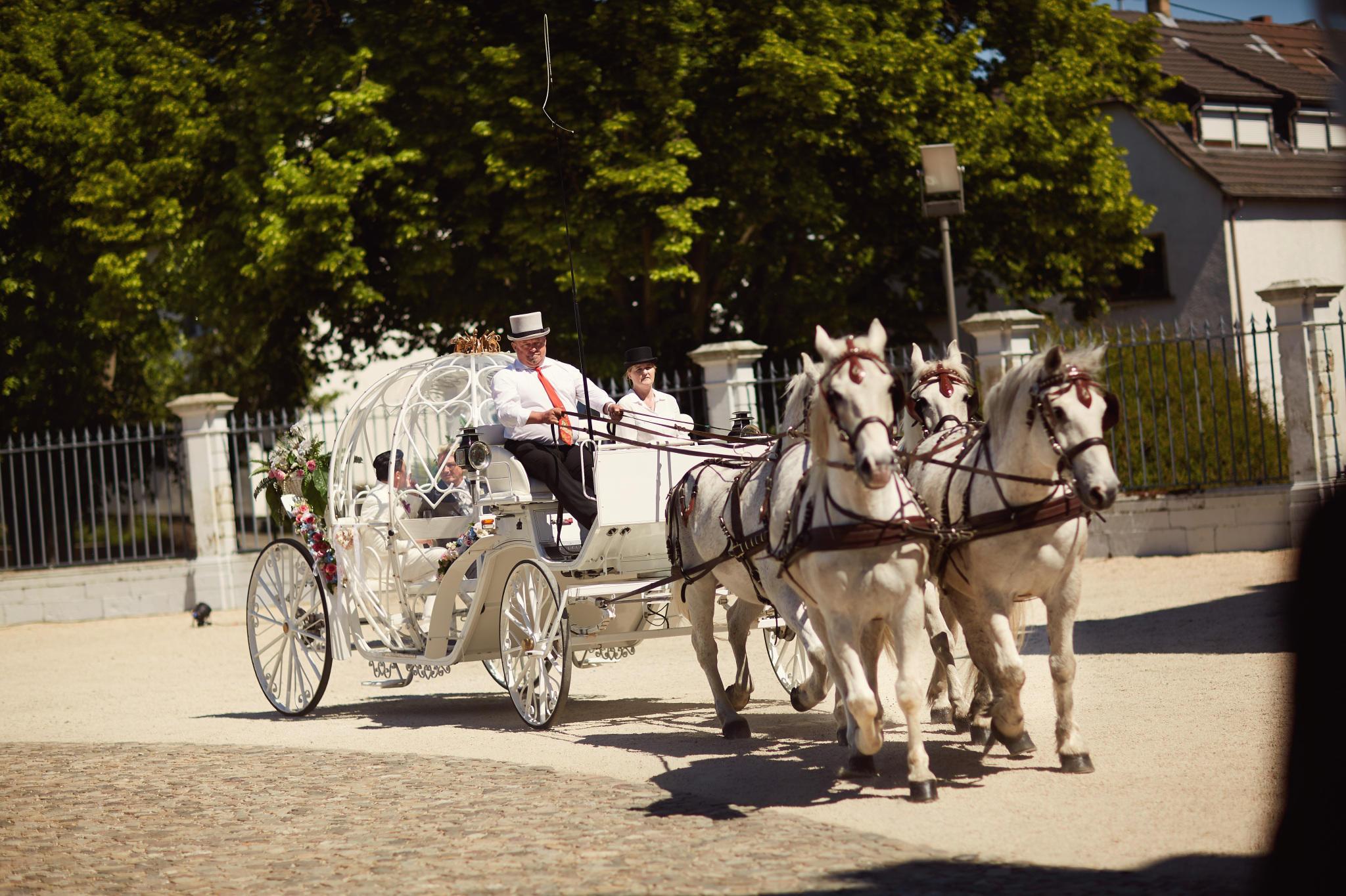 Hubert Und Matthias Die Hochzeit