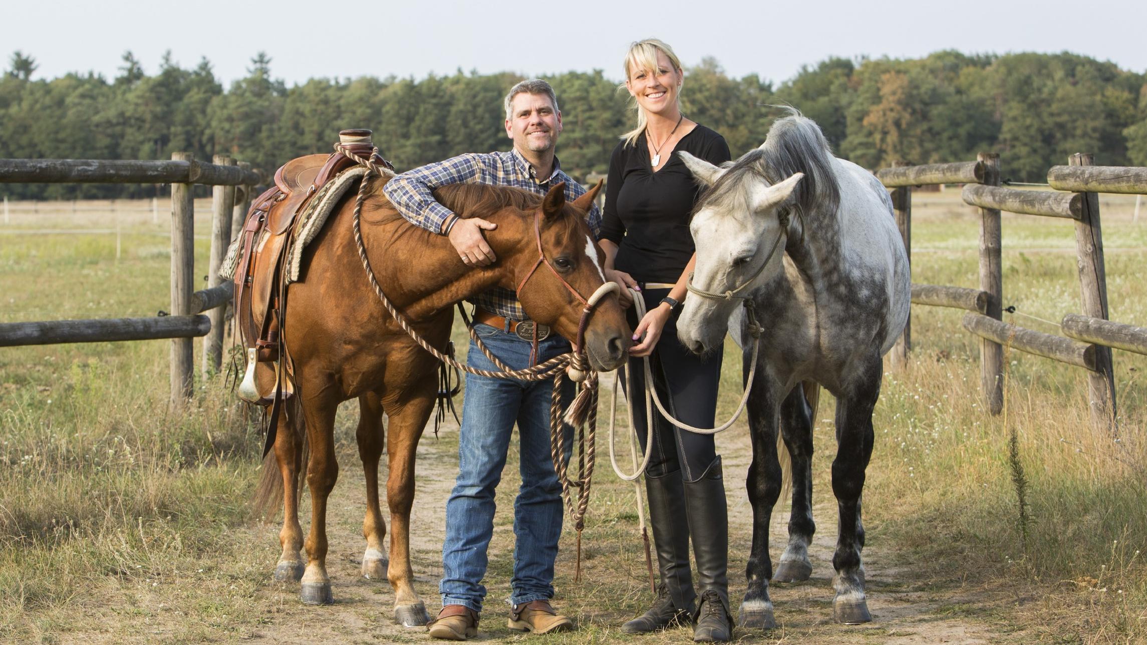 Tv Now Pferdeprofis