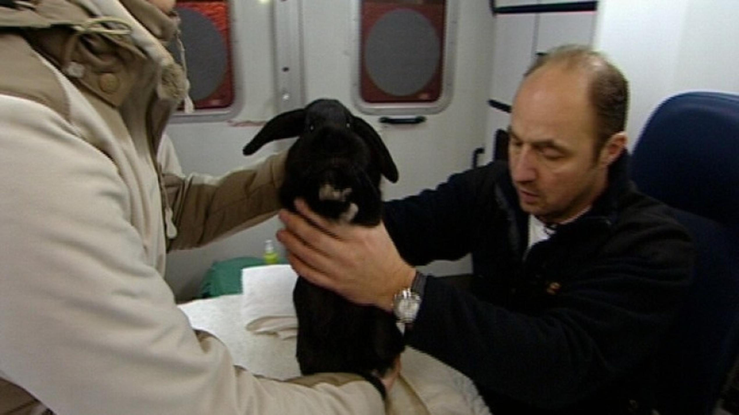 Tierarzt Riedenburg
