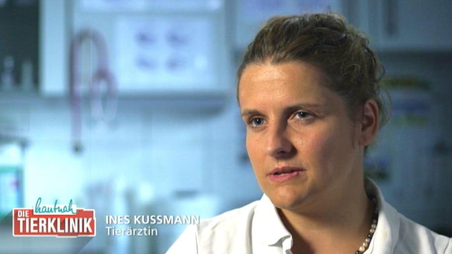 Ines Kussmann