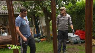 Beet Bruder 2017 Bewerben Gartenprojekte